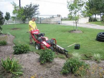 lawn maintenance new braunfels